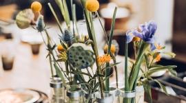 Tsé & Tsé fête les 25 ans du Vase d\'Avril | Newsroom | 14 septembre