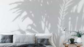 Les Dominotiers - Décor panoramique Palm Shadow