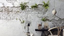 Plants brick wall - Les Dominotiers