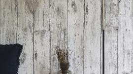 White wood - Les Dominotiers