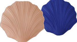 Coquille FdC