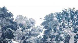 Les Dominotiers - Volume 5 - Dream Forest